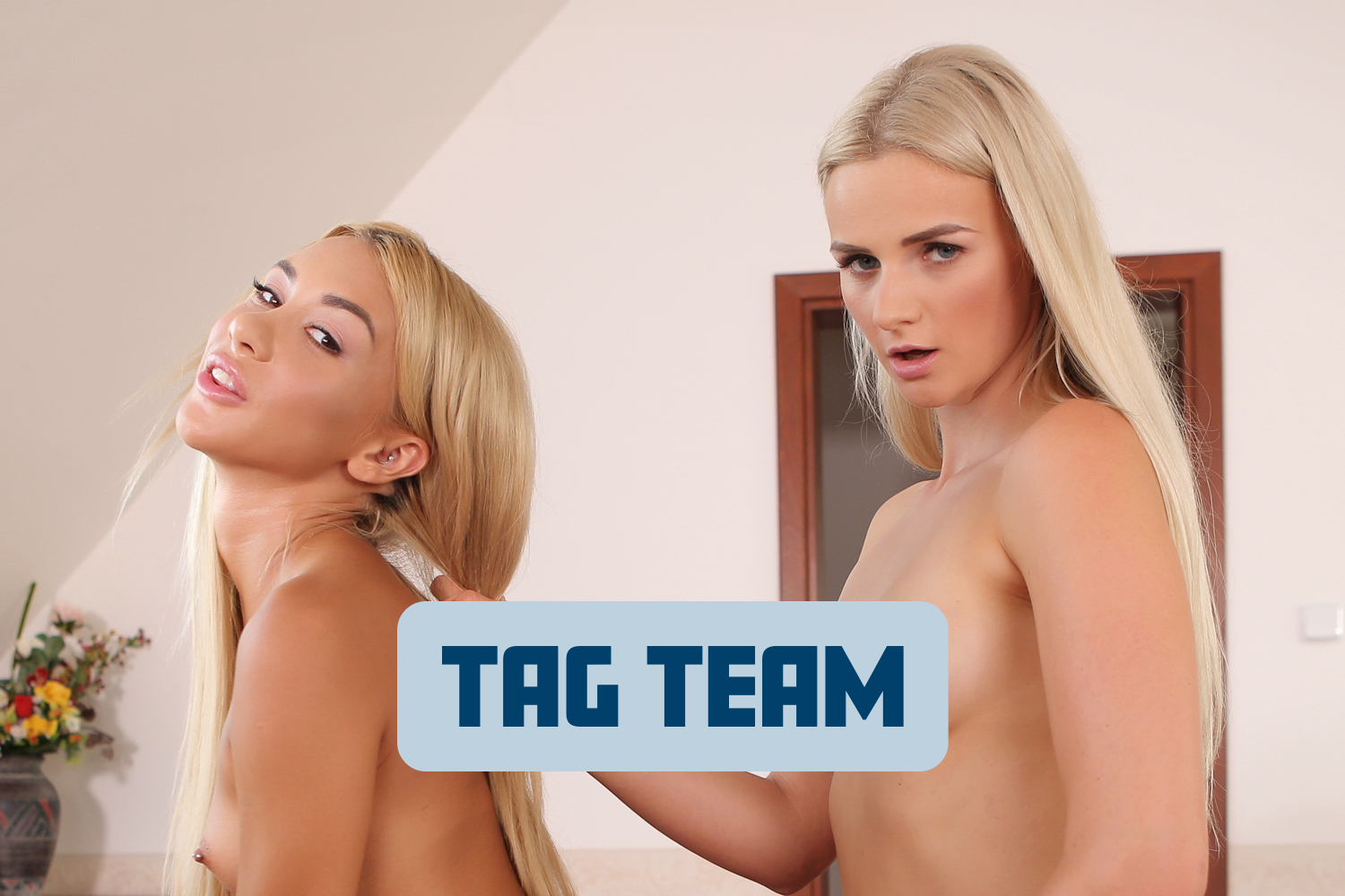 Tag Team VR Porn Video