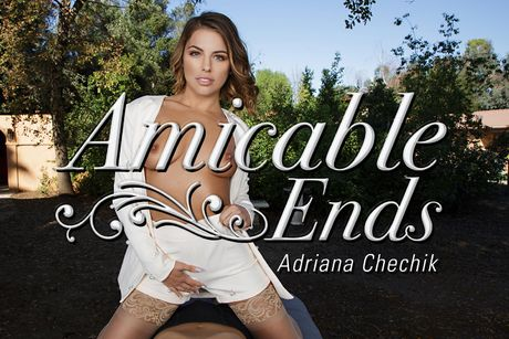 Amicable Ends VR Porn Video