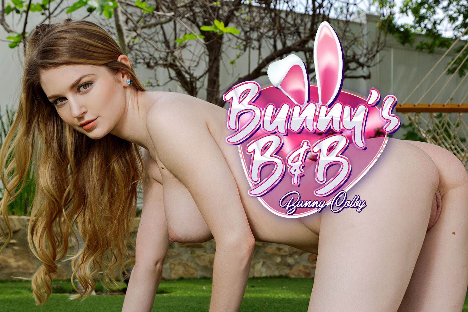 Bunny's B & B VR Porn Video