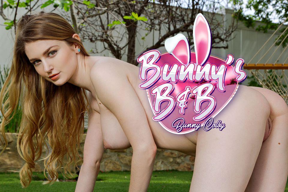 Bunny's B & B VR Porn Video