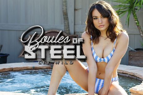 Boules of Steel VR Porn Video
