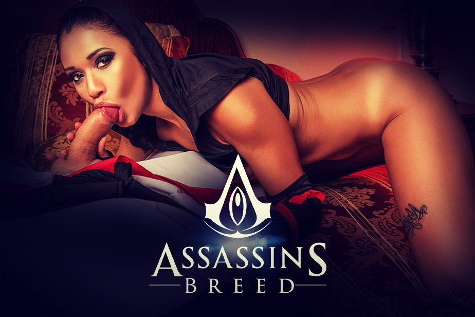 Assassins Breed VR Porn Video